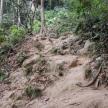 "The ""path"""