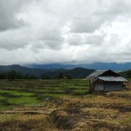 I Survived the Ride to Pai