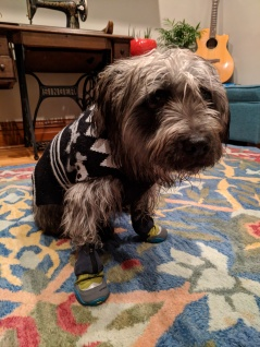 Abi has winter boots, but is not sure how she feels about them