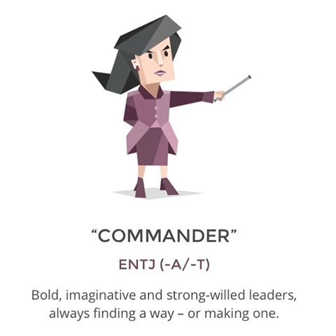 Image result for commander personality